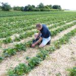 Landwirtschaft - Kopie
