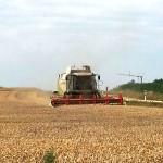 landwirtschaft6