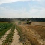 landwirtschaft9